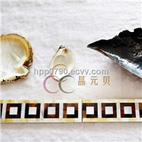 Elegant Fashion Natural Decorative sea shell border mother of pearl  backing on ceramic