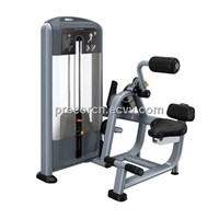 PRECOR DSL0313 Selectorized Back Extension Fitness Equipment