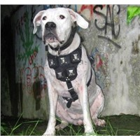 handmade leather pit bull weighted dog harnesses