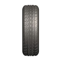 the winter tire 205/55R16