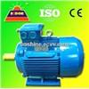 Electrical Motor (IEC AC Standard)
