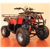 Automatic All Terrain Vehicles Kids Gas Powered ATVs