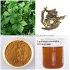 High quality Chinese Siberian Ginseng Extract, Eleutheroside 0.8%-2.0%HPLC