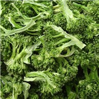 Freeze Dried Broccoli Healthy Food Freeze Dried Vegetables Dehydrated Foods Online Camping Food