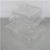 Fruit Container , PET Blister Container ,Plastic Clear Container ,LOGO design ,food Grade