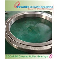Special Slewing Bearing