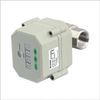 automatic timer drainage valve