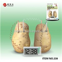 education and science  potato clock set toy