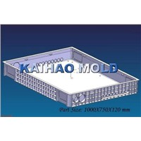 injection plastic tray container molding