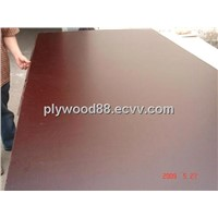 phenolic film faced plywood