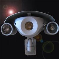 1/3 Sony CCD 700TVL CCTV IR Bullet Camera