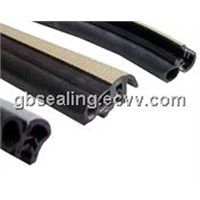 Windshield Glass Seal Strip