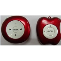Fashion Min iPod FM Radio/Portable Radio