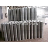Hot-Dipped Galvanized Welded Wire Mesh (Anping Factory)
