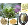 Tribulus Terrestris P.E/ saponins/Protodioscin/plant extract