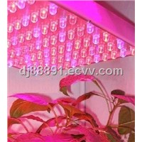 12W LED Factory Sale Plant Growth Lamp