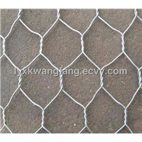 Hexagonal Wire Mesh/PVC Coated Hexagonal Wire Mesh