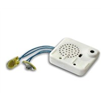 recordable sound module for toys
