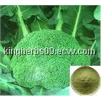 Broccoli Extract Sulforaphane Sulforaphane 0.1%, 5%, 10%, 50% by HPLC;
