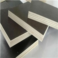 1220*2440 brown film faced shuttering plywood