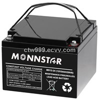 AGM VRLA Battery (12V24AH)
