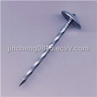 Galvanized Umbrella Roofing Nails (Smooth Shank; Twist Shank)