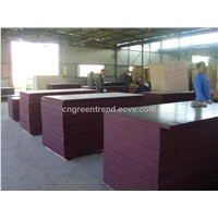 WBP Phenolic Film Faced Plywood