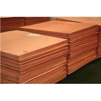 Copper Cathodes (Grade A)