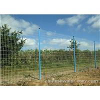 Deep Green PVC Coated Holland Electric Welded Wire Meshes