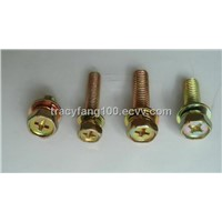 Hex Head Assemblies-Spring Lock Washer and Plain Washer