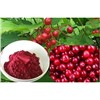 Cranberry Extract 25% to 35% Anthocyanins, 25% to 50% Proanthocyanidins