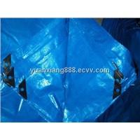 Blue/Blue Plastic Tarpaulin ,Blue PE tarpalin ,double blue tarpaulin