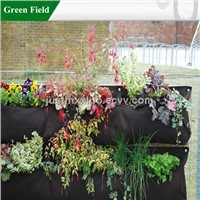 Green Field Vertical Garden Green Wall