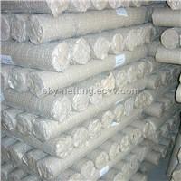 PVC and Galvanized Hexagonal Wire Mesh Low Price