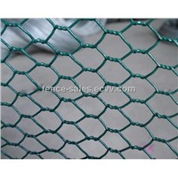 PVC Coated Hexagonal Wire Mesh (Factory Supplier)