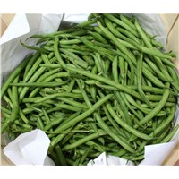 Buy High Quality Green Beans From Our Company