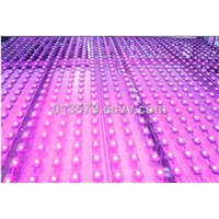 1528 LED Pixel Light Source for LED Curtain Display, LED Vedio Display
