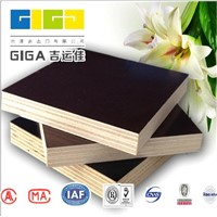 15mm plywood sheet marine veneer plywood price