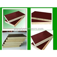 indonesia wbp plywood concrete shuttering for sale