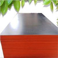 waterproof 1220*2440 black concrete form plywood manufactory
