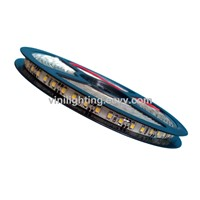 DC12V Flexible LED Strip Light SMD3528 120led/m