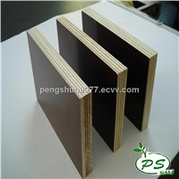 Phenolic film faced plywood for construction