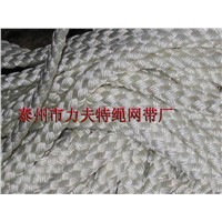 paper Carrier Rope,Paper Machine Rope