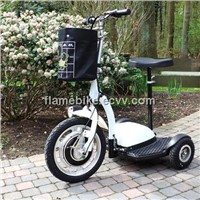 Zappy Electric Tricycle Scooter/Electric Crusie Scooter/Electric Patrol Scooter