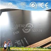 Newsan Film Faced Plywood / FFP/ Shuttering Plywood / Marine Plywood