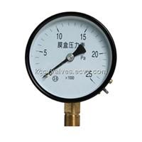 YE serise capsule pressure gauge(KCCV)