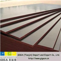 13mm phenolic resin film faced plywood