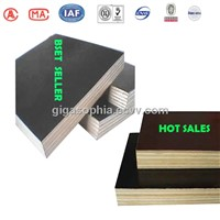 17mm WBP phenolic construction film faced plywood