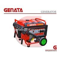 2014 New Portable Power Gasoline Generator (GR5500CN)