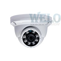 3.0 Mega HD WDR IP66 IR Network Dome (WLD-6302FEB)